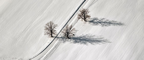 National Geographic's photo of the day: 10th December National Geographic's photo of the day: 10th December trees road latvia 73873 990x7421