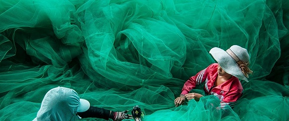 "Vietnam picture ""National Geographic's photo of the day"" 13th February National Geographic's photo of the day: 13th February National Geographic's photo of the day: 13th February fishing nets vietnam 76314 990x7421"