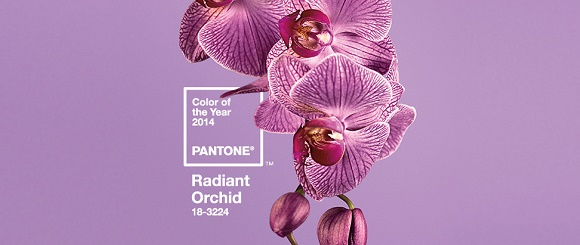 "How to decorate with radiant orchid - great furniture and accessories"" How to decorate with radiant orchid - great furniture and accessories How to decorate with radiant orchid – great furniture and accessories Color of the year"