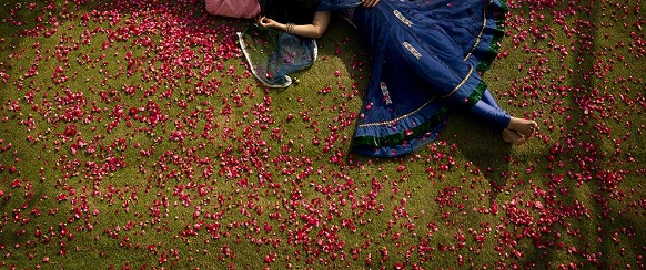 """National Geographic photo of the day: 2nd April"" - couple in love National Geographic's photo of the day: 2nd April National Geographic's photo of the day: 2nd April rose petals couple 78172 990x7421"