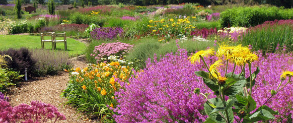 Sussex Prairie Garden Bold ideas: How to create a fashionable Garden Bold ideas: How to create a fashionable Garden sussex prairie garden